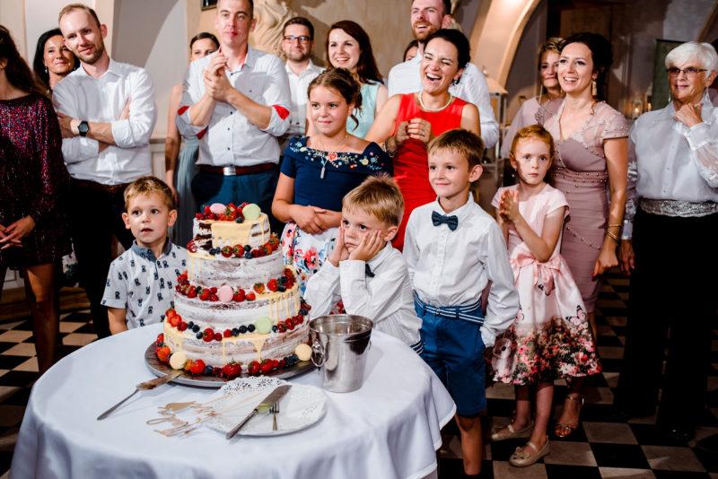 wesele w palacu mojecice - fotoreportaz slubny - na luzie