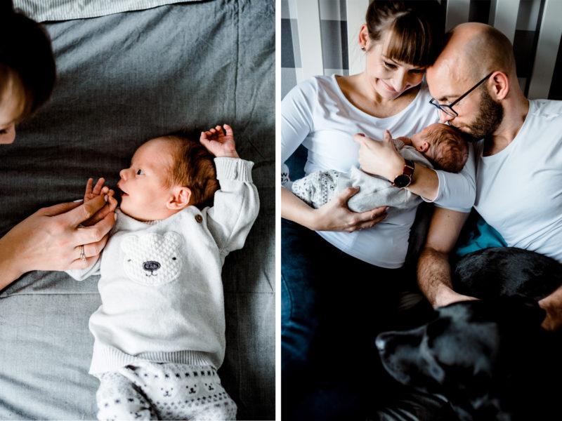 naturalna sesja rodzinna we wroclawiu
